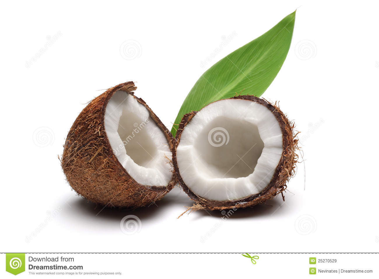 Download Coconut stock image. Image of brown, healthy, fresh, coconut - 25270529