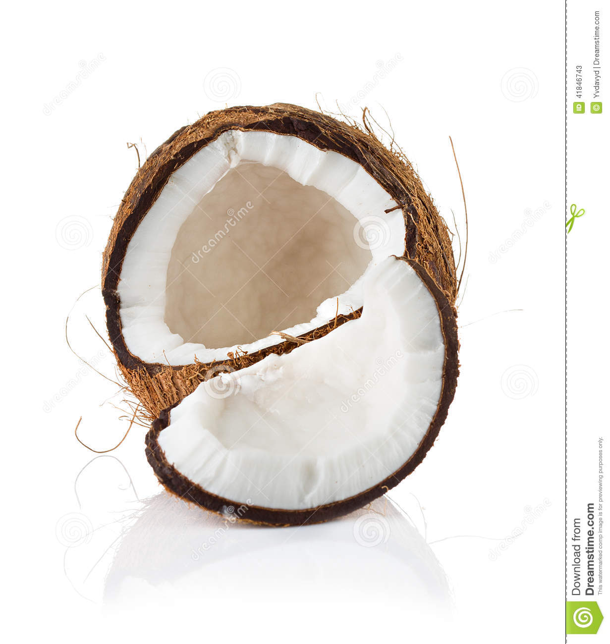 autobiography of coconut tree The origin of coconut tree is a hindu mythological story.
