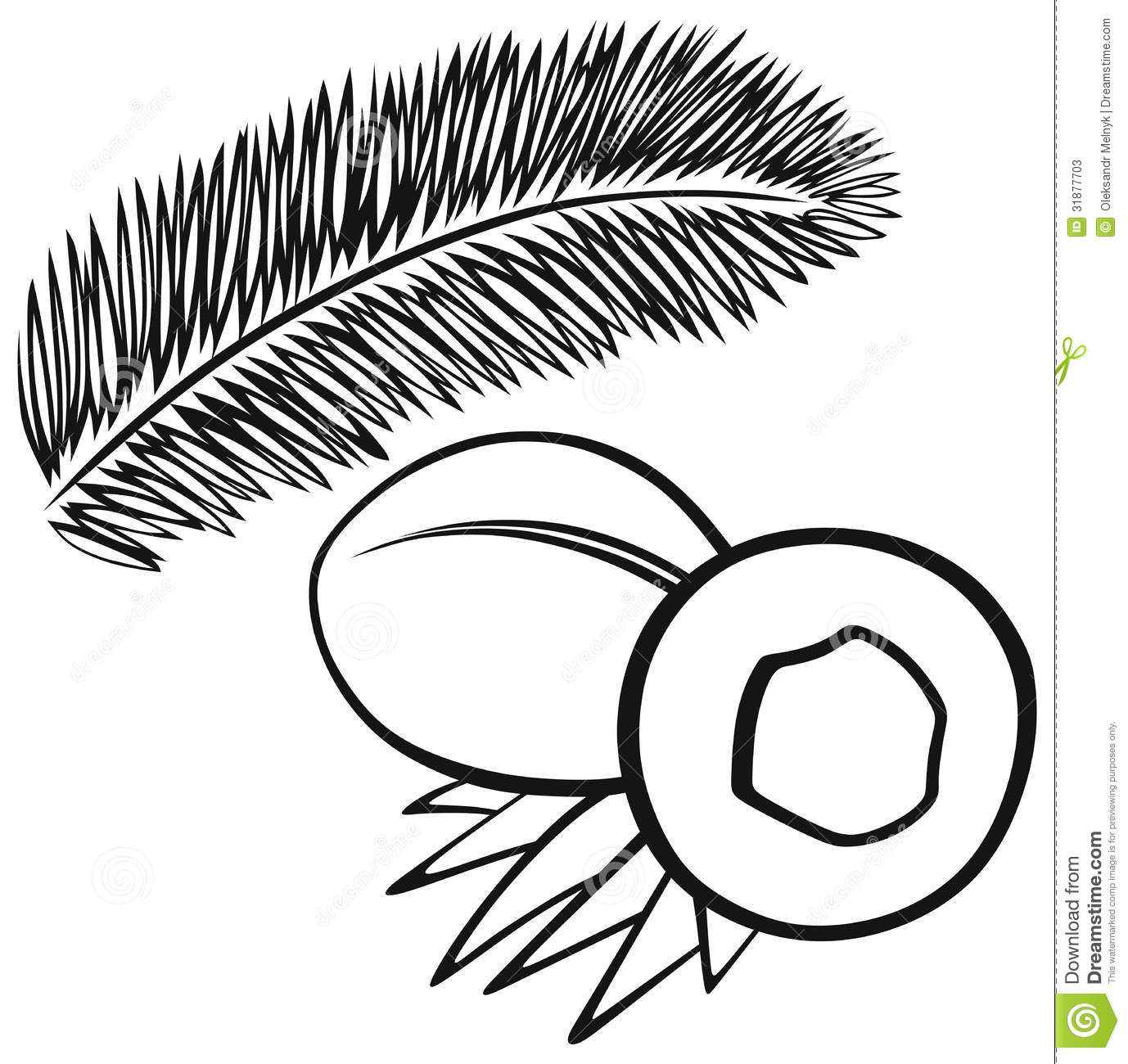 Coconut With Leaves Stock Vector Illustration Of Design