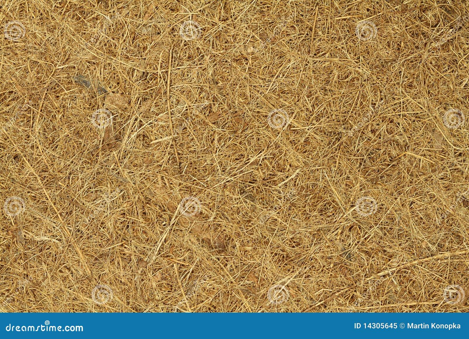 Coconut Matting Royalty Free Stock Photo Image 14305645