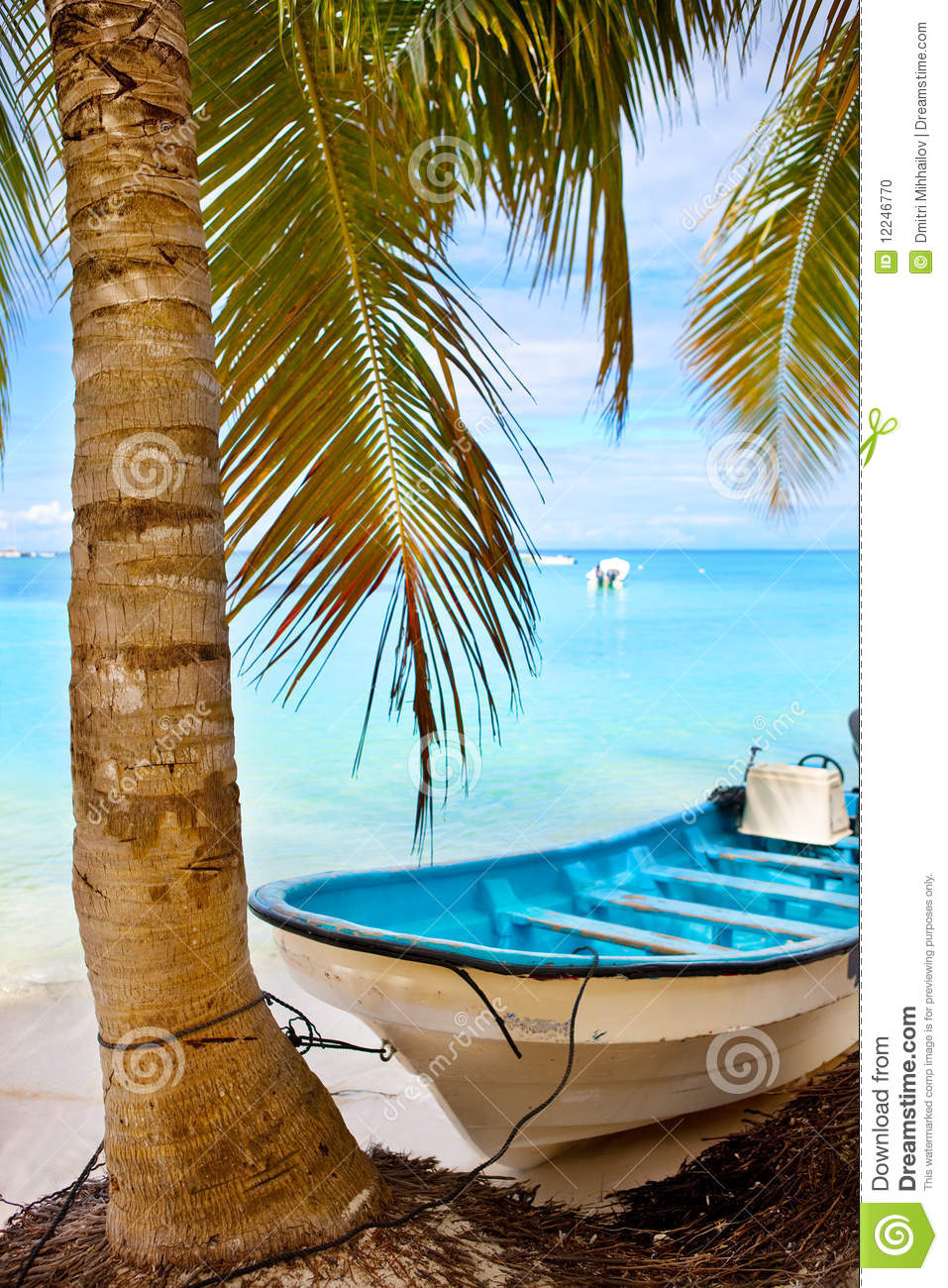 Coconut Palm Tree And A Boat Stock Photo - Image: 12246770