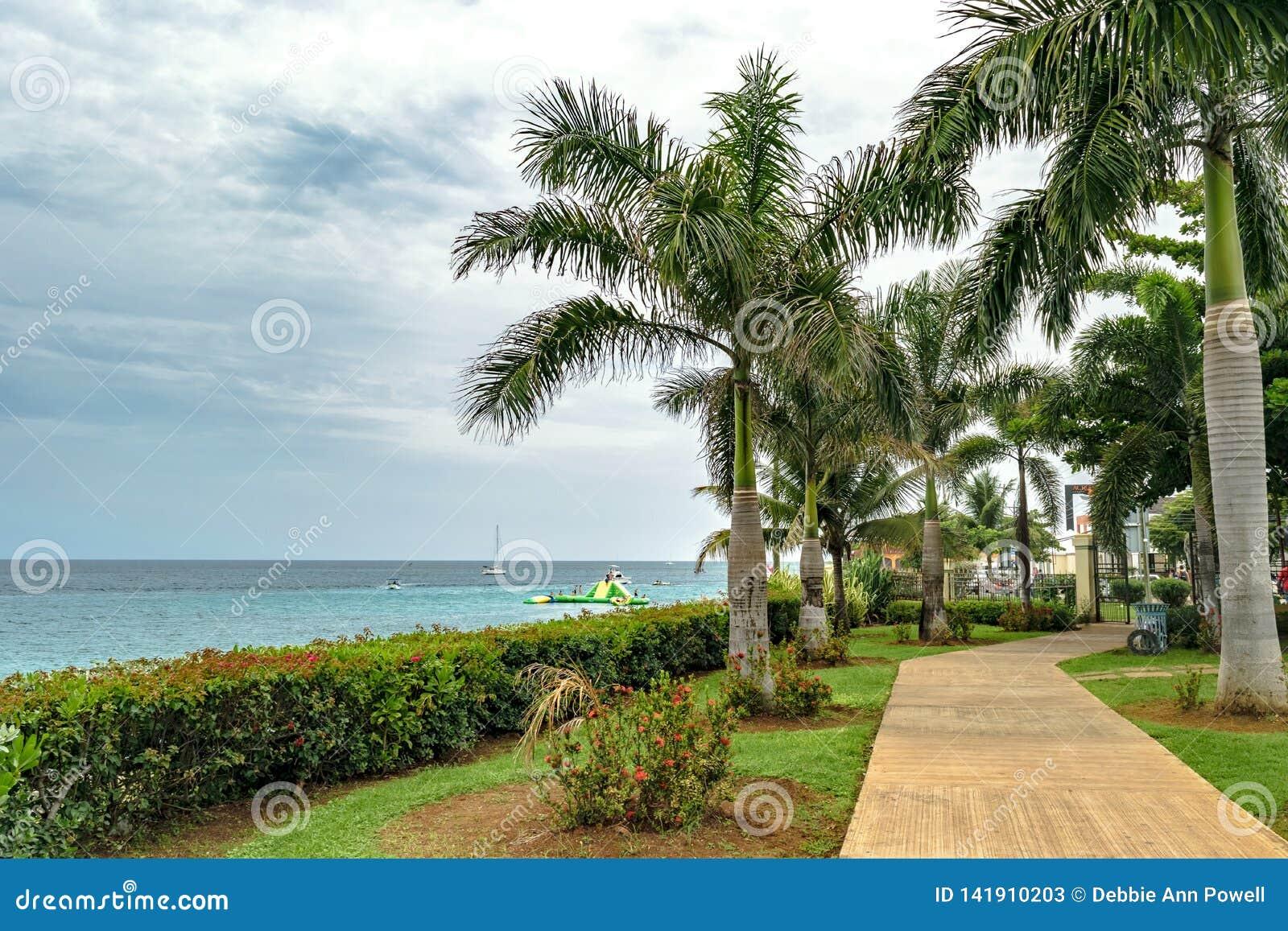 Αποτέλεσμα εικόνας για jamaica june