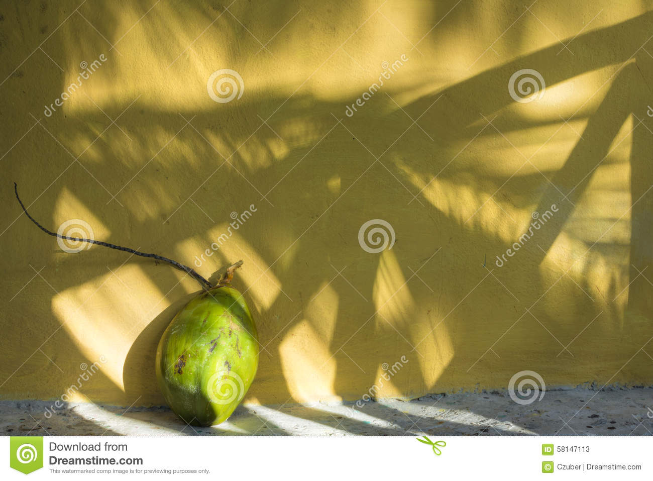 http://thumbs.dreamstime.com/z/coconut-shadows-tropics-big-green-husk-stem-next-to-yellow-exterior-wall-tropical-palm-fronds-copy-space-58147113.jpg