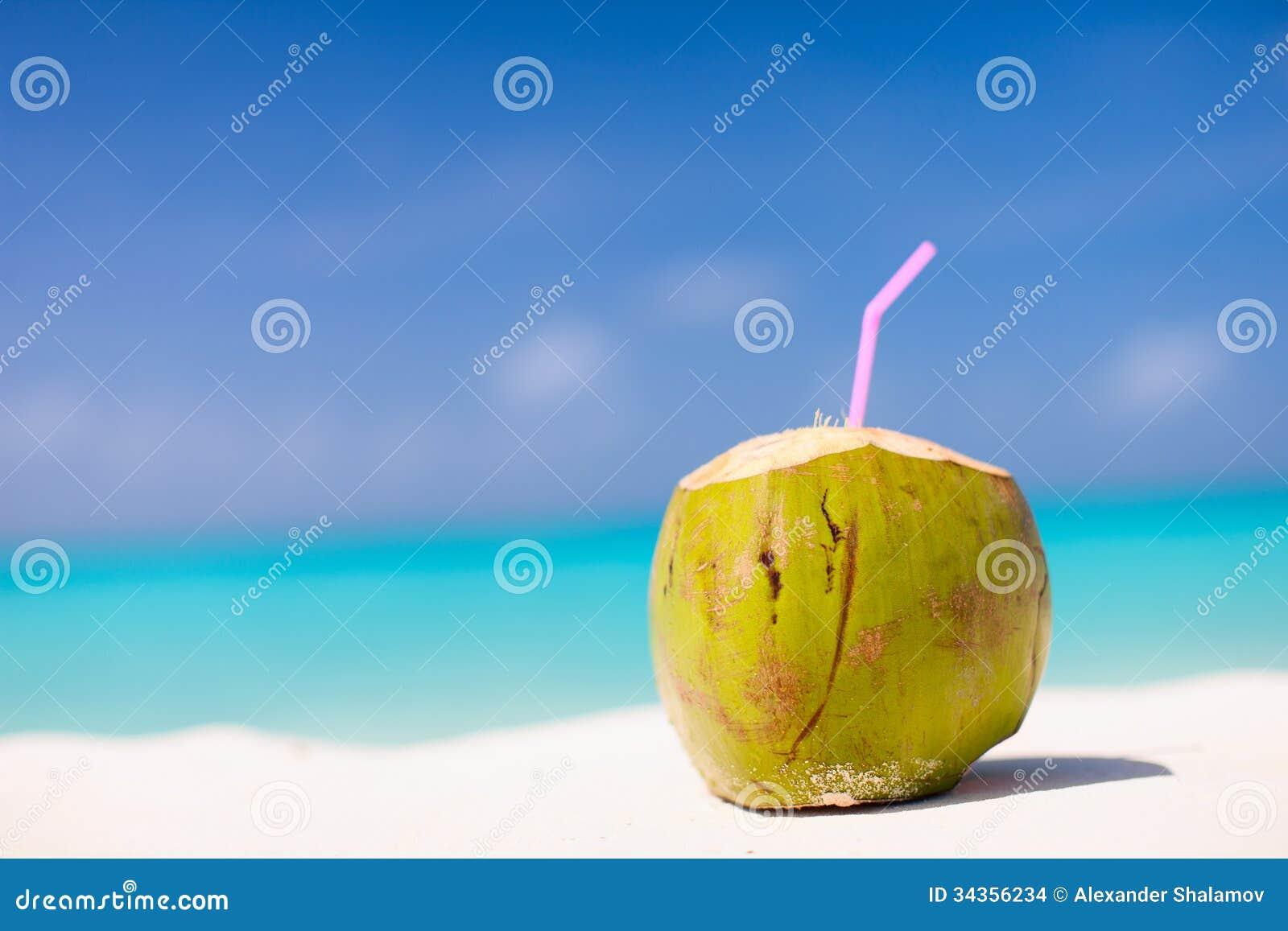 coconut on a tropical beach stock photo image 34356234