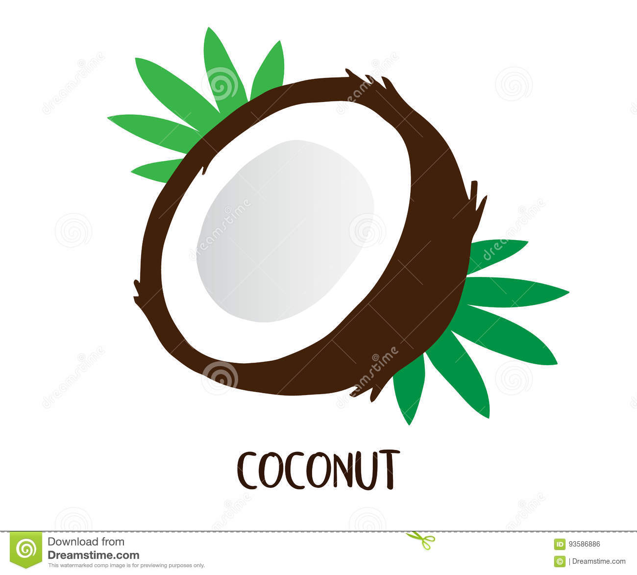 Download Coconut Stock Vector Illustration Of Exotic Green Background