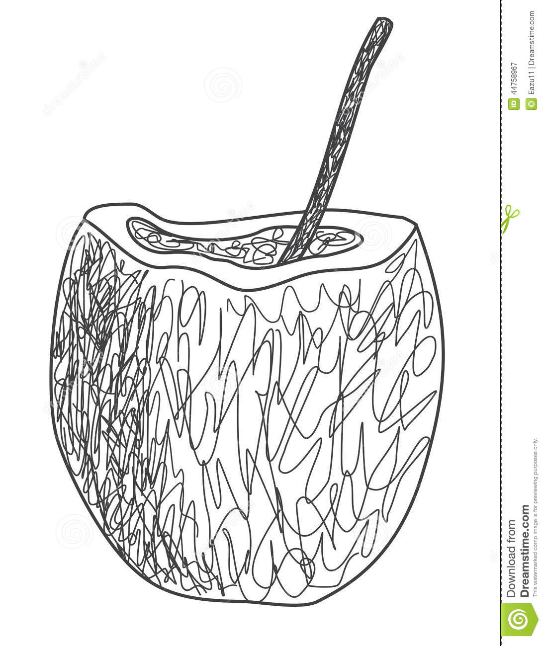 Download Coconut Water Drink Stock Illustration Of
