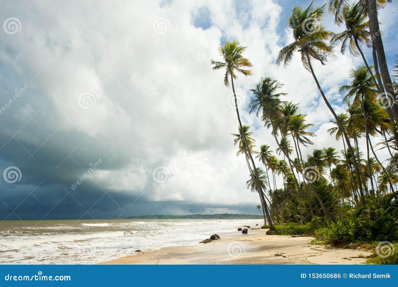 Cocos Trzymać na dystans, Trinidad