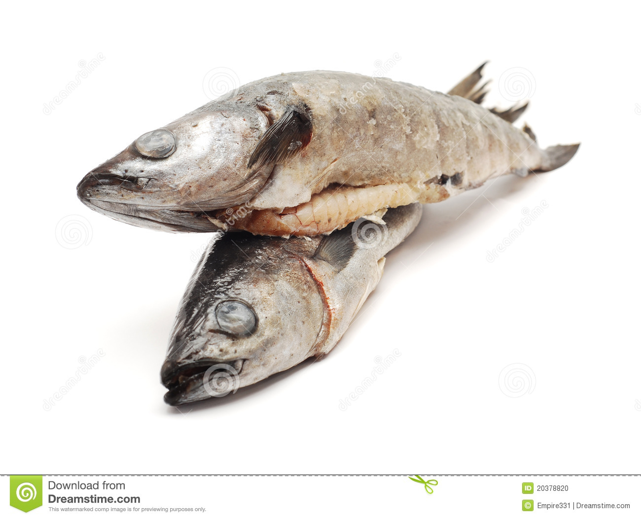 Cod fish stock photo image of background food isolated for What is cod fish