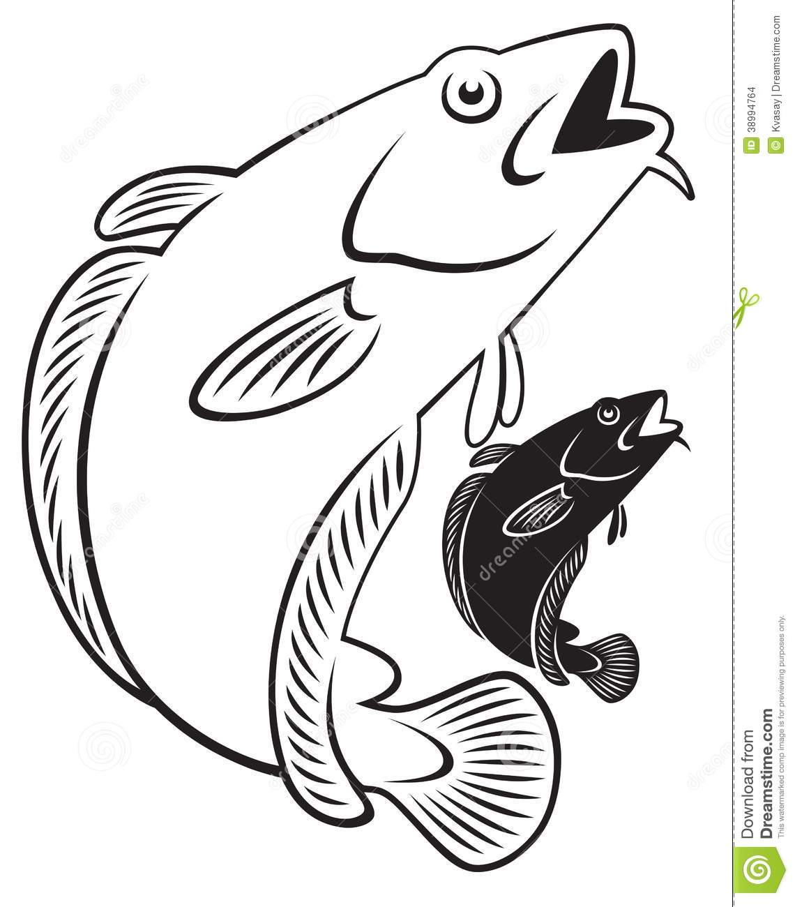 Cod Fish Stock Vector Image