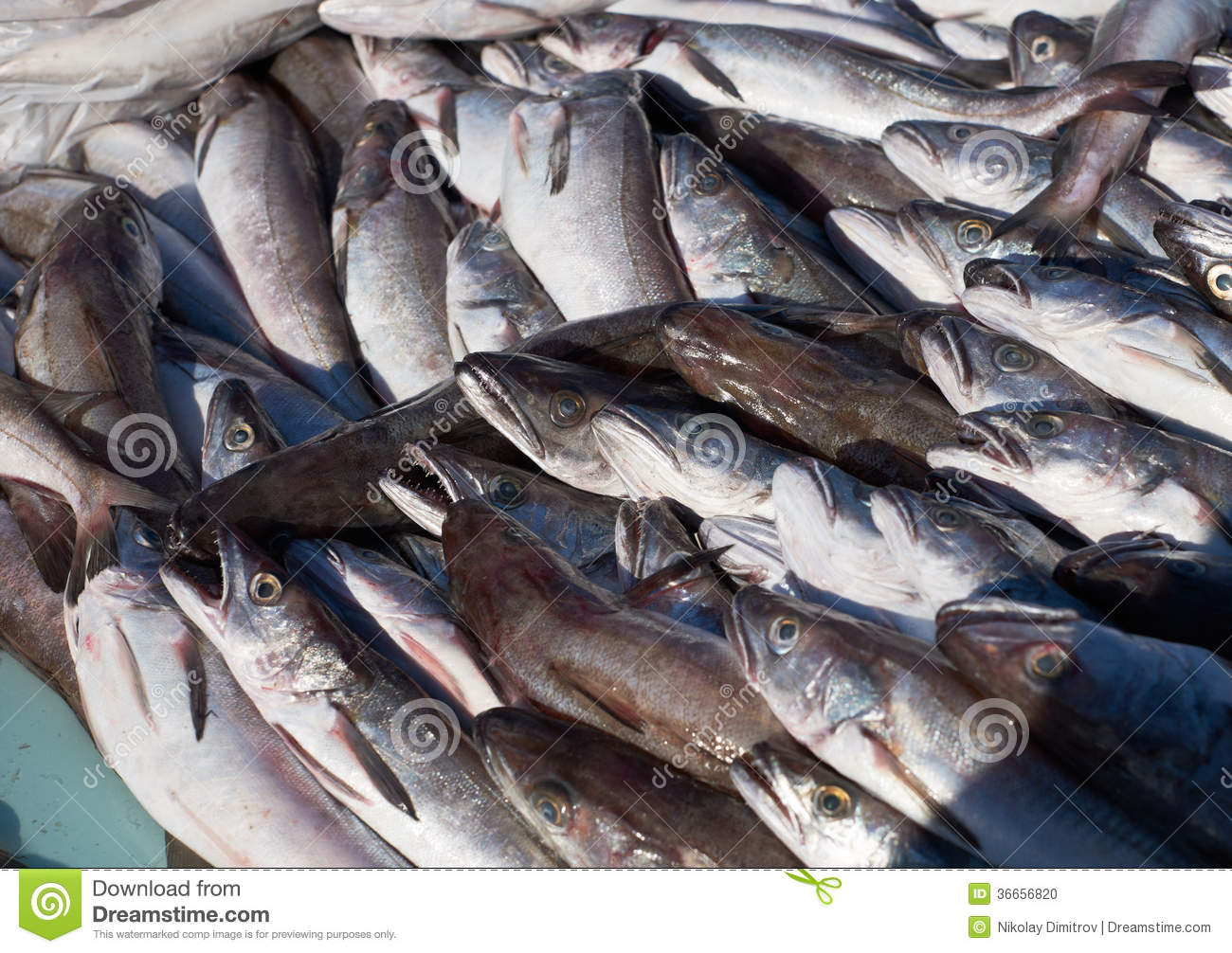 how to say cod fish in french