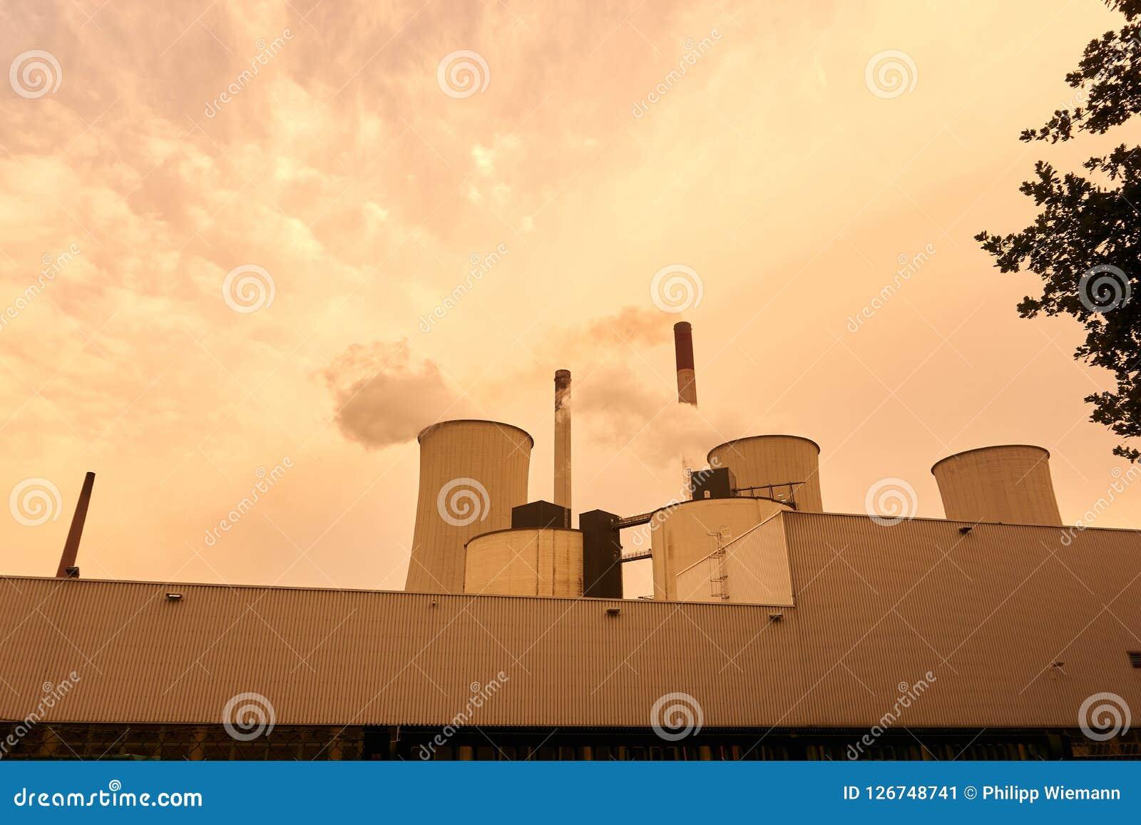 Coeal ha infornato la centrale elettrica