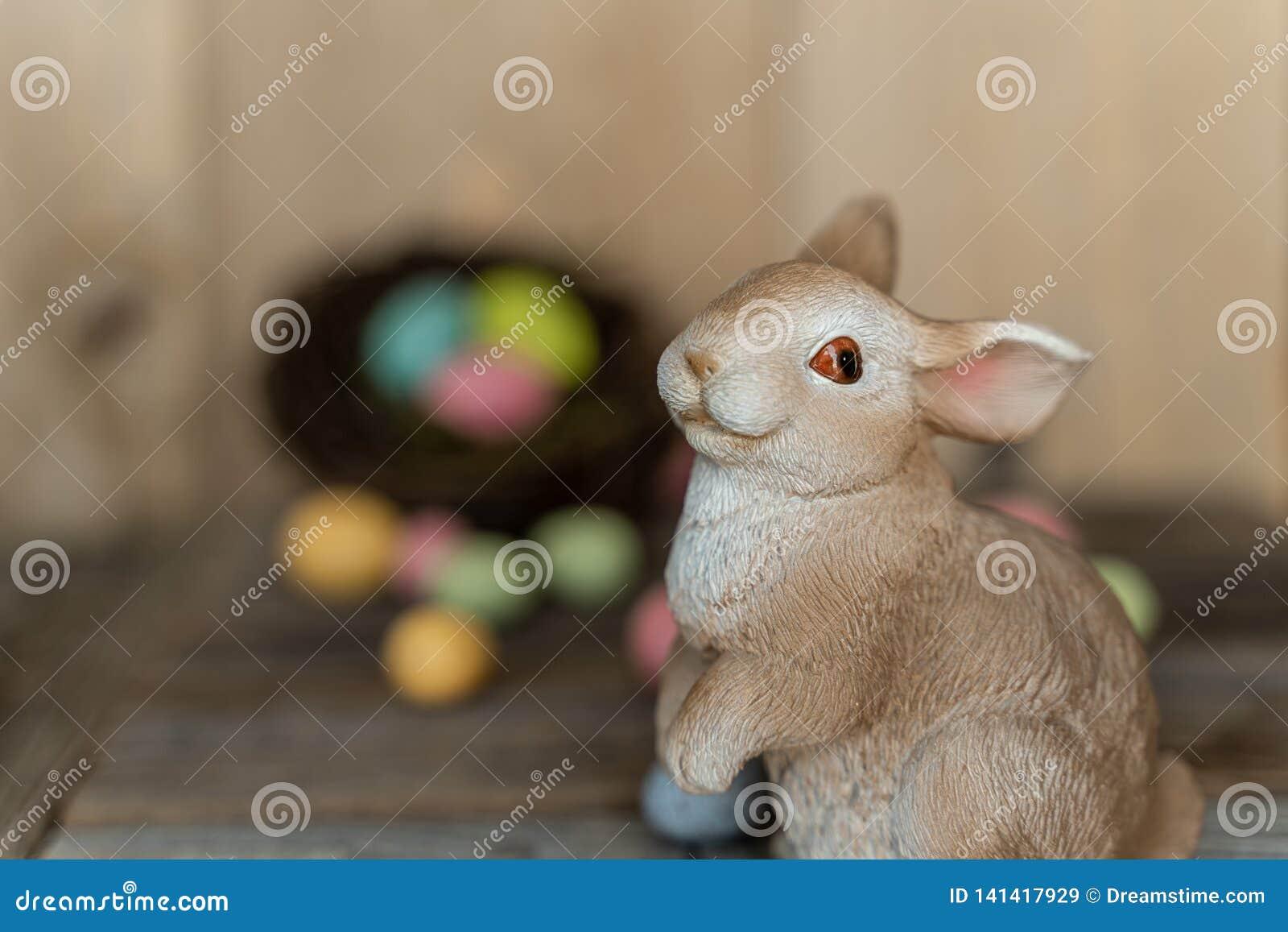 Coelho com fora dos ovos focalizados em um ninho