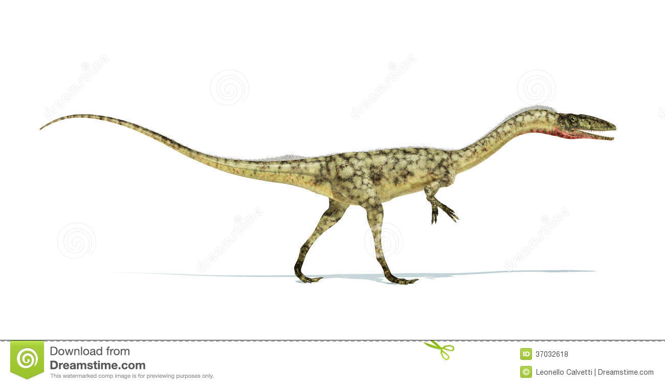 Coelophysis dinosaur photorealistic and scientifically correct ...