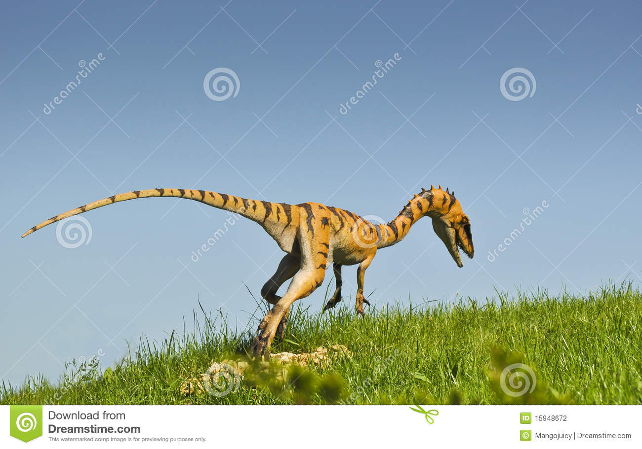 Jurassic period plants and animals - photo#15