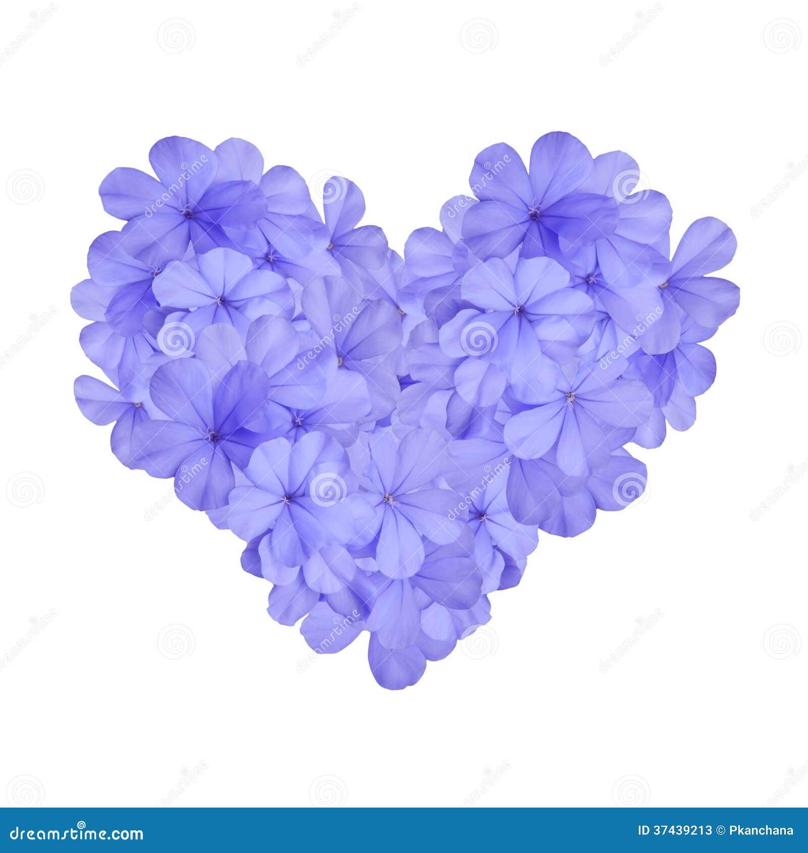 Coeur Avec La Fleur Bleue Image Stock. Image Du Saison
