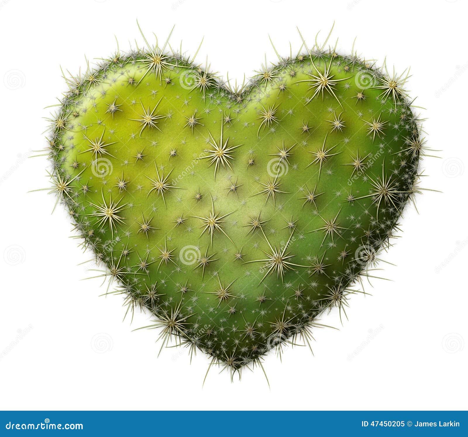 coeur de cactus photo stock image 47450205. Black Bedroom Furniture Sets. Home Design Ideas