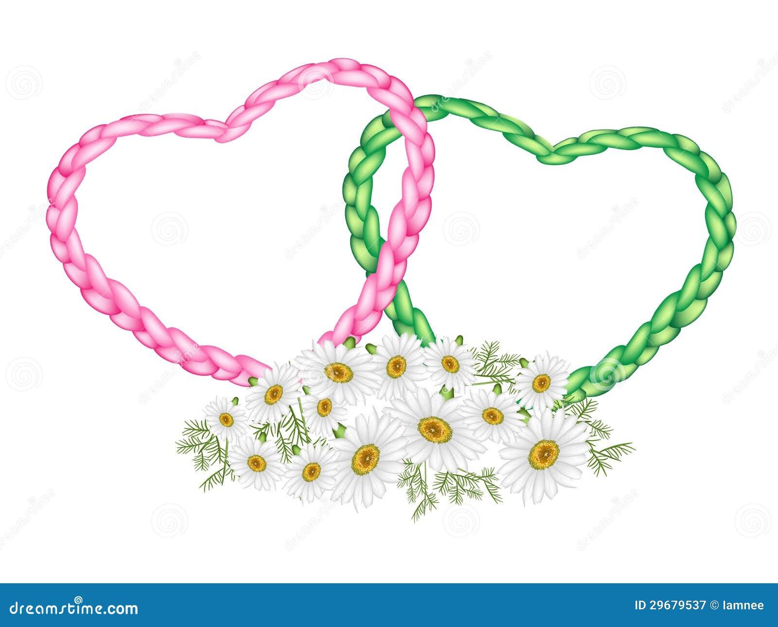 Coeur de deux cordes avec une fleur de marguerite blanche photographie stock libre de droits - Coeur avec des photos ...
