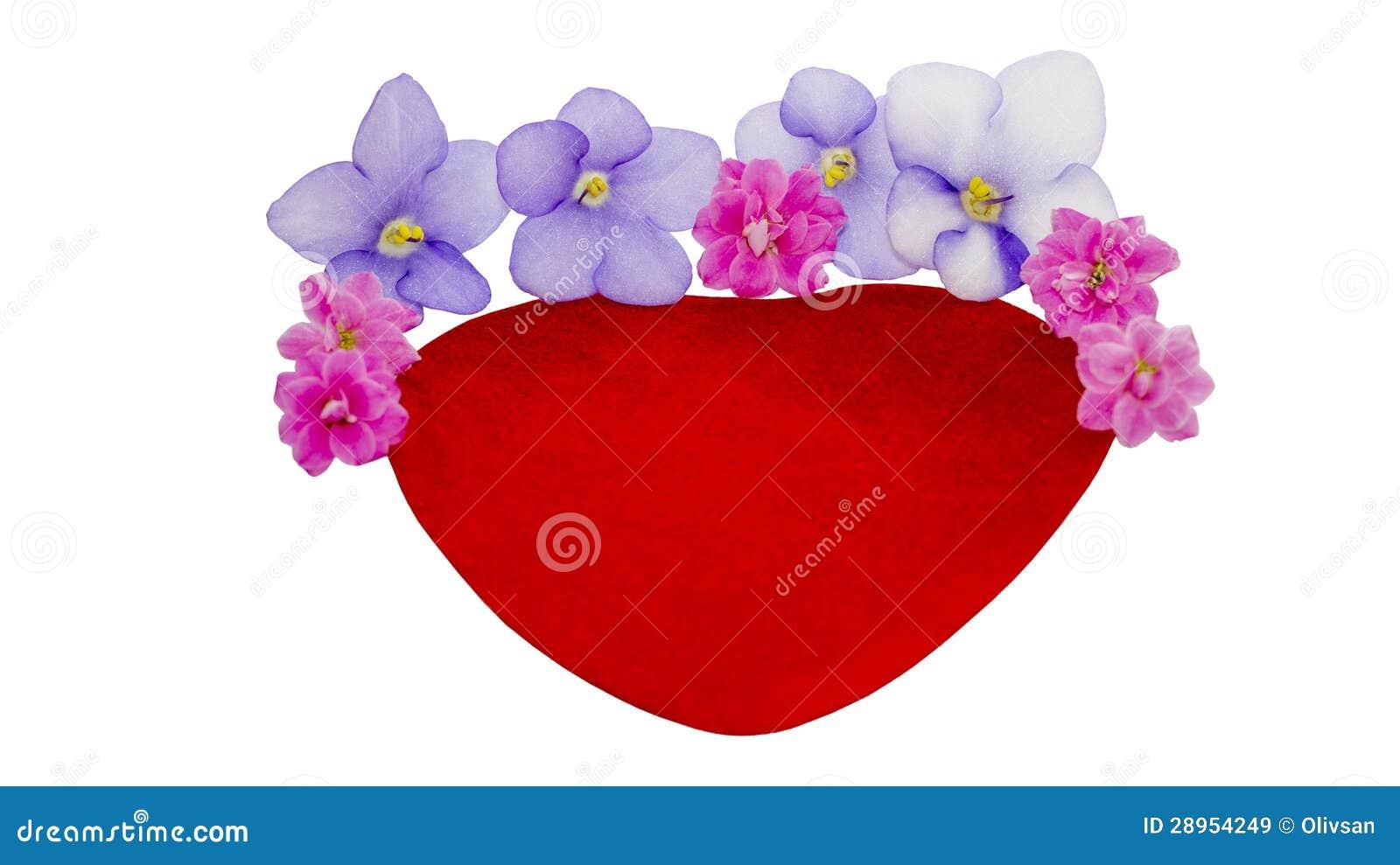 Coeur de velours et fleurs naturelles images libres de droits image 28954249 - Coeur en fleurs naturelles ...