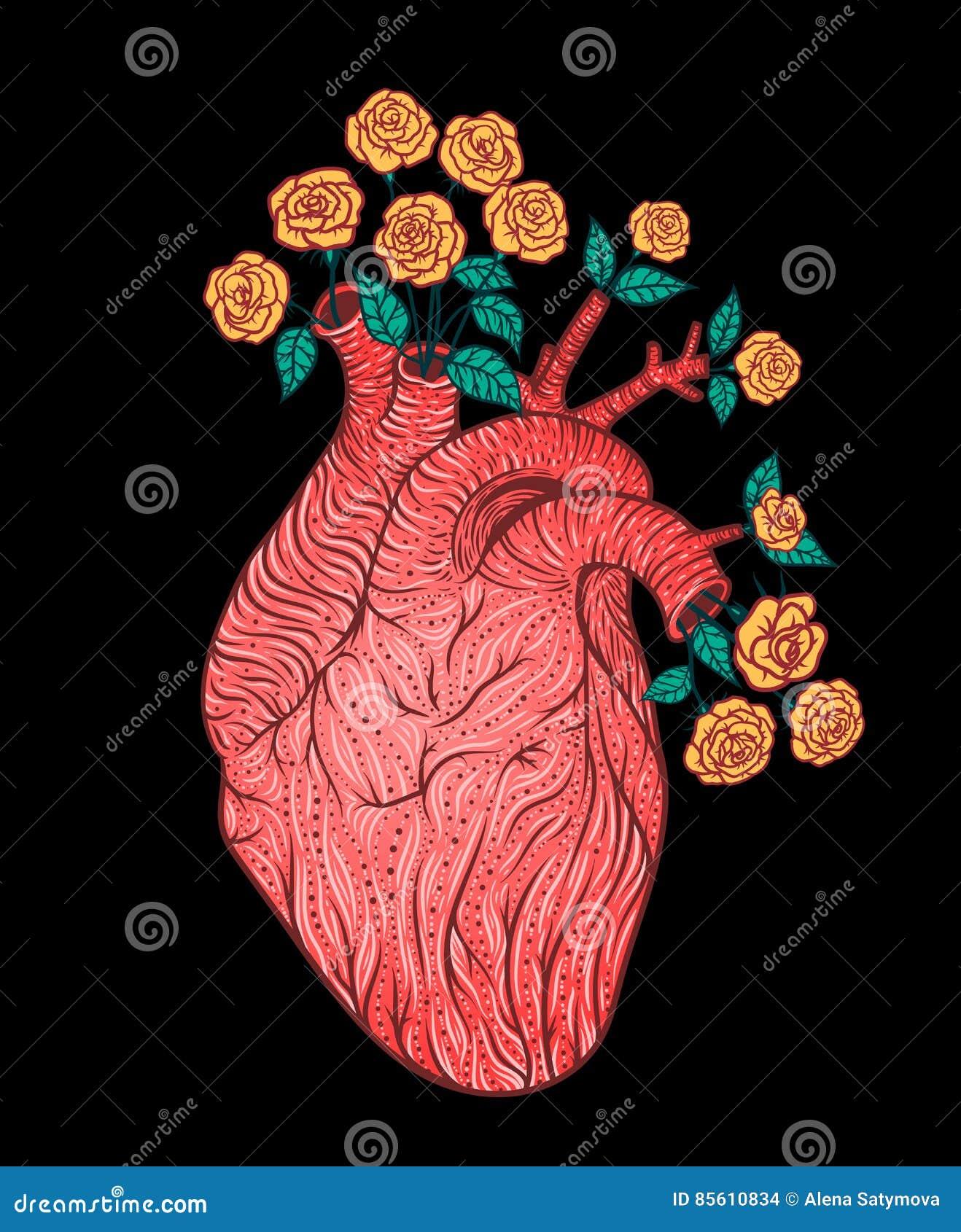 Coeur Humain Avec Des Fleurs Illustration De Vecteur Style De
