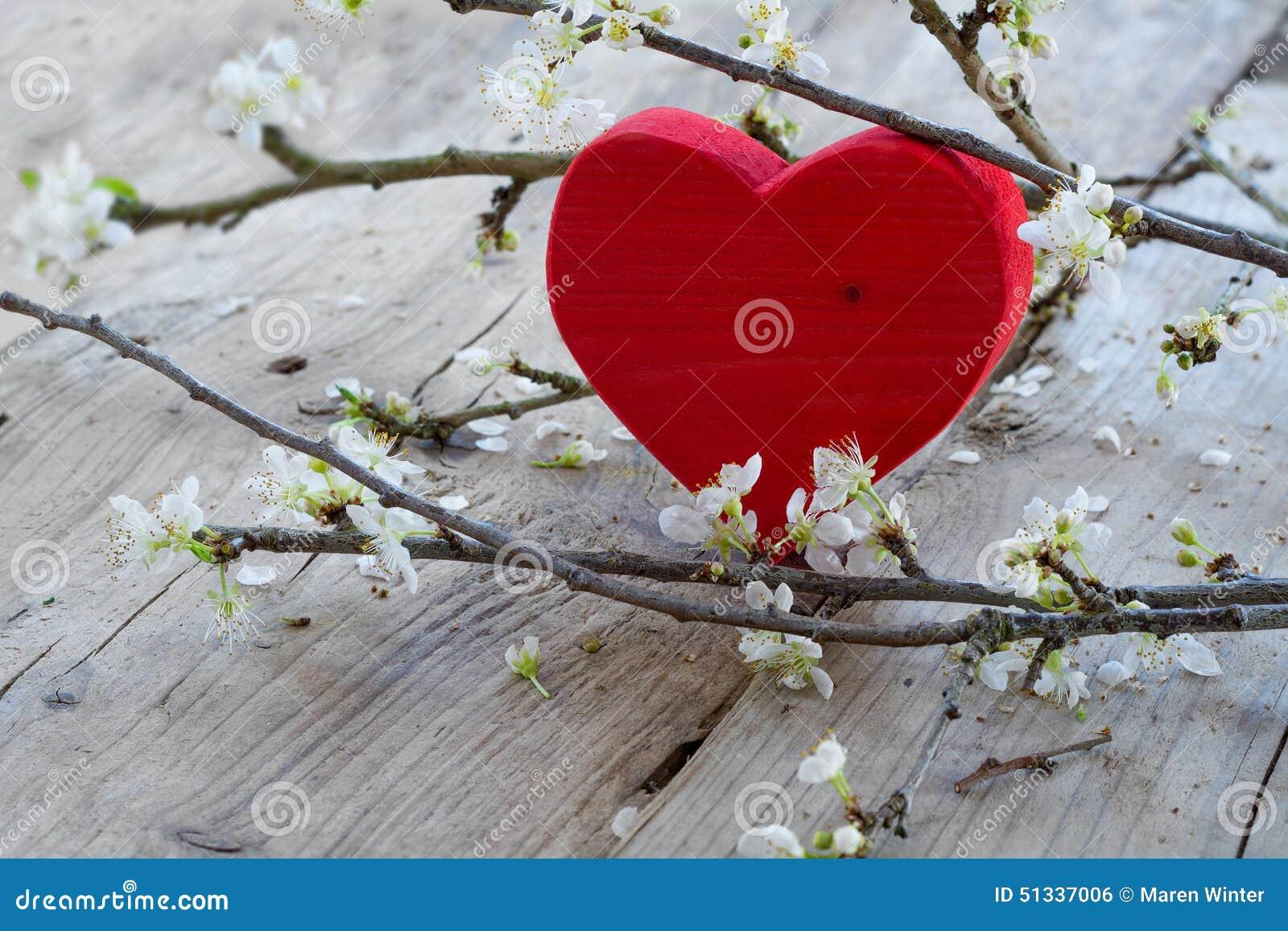 coeur rouge avec la branche de fleur symbole d 39 amour pour le jour de valentine photo stock. Black Bedroom Furniture Sets. Home Design Ideas