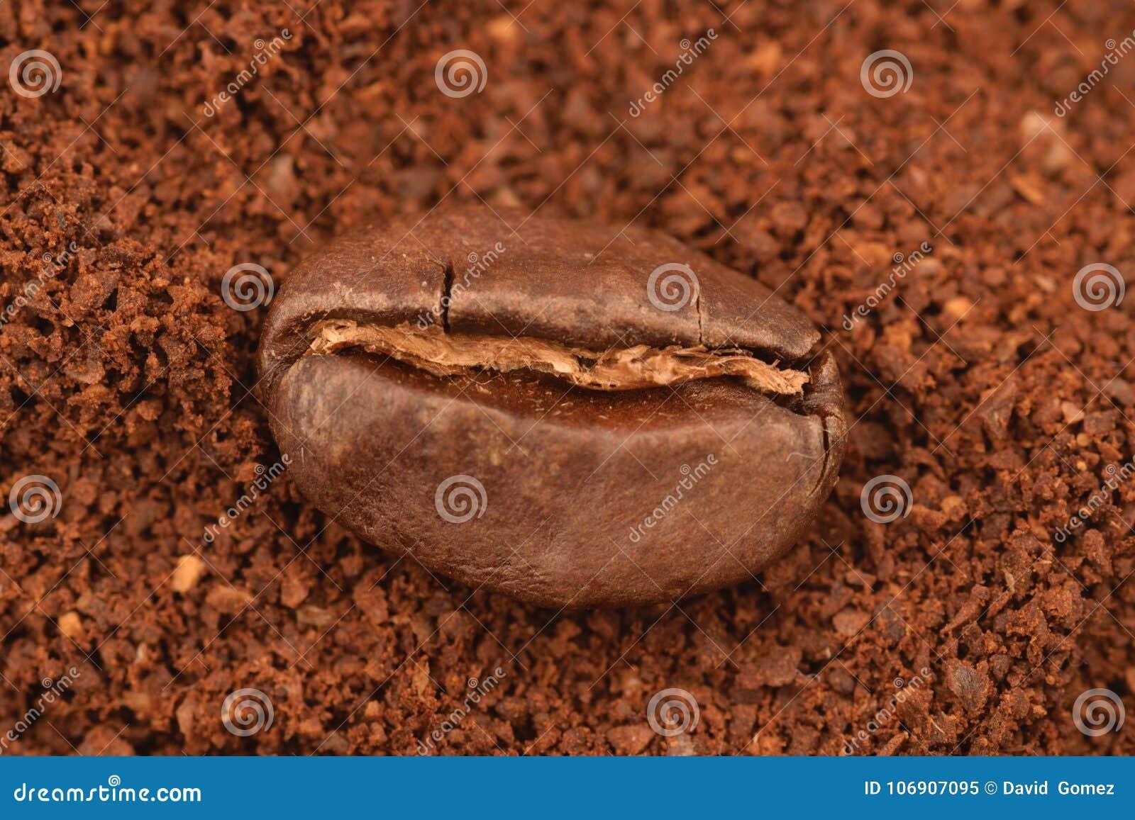 Coffe adra w boakground zmielony coffe
