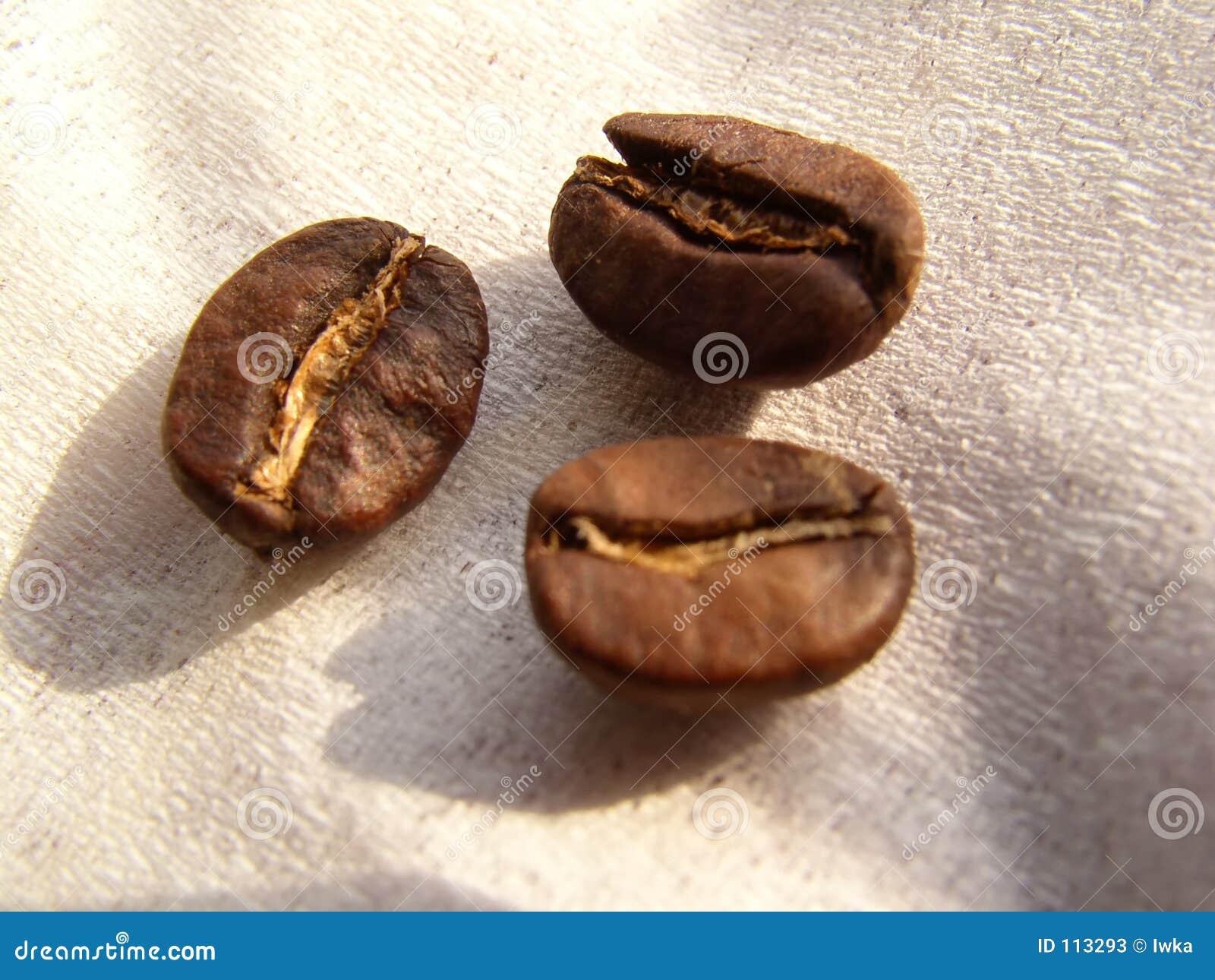Coffe Bohnen
