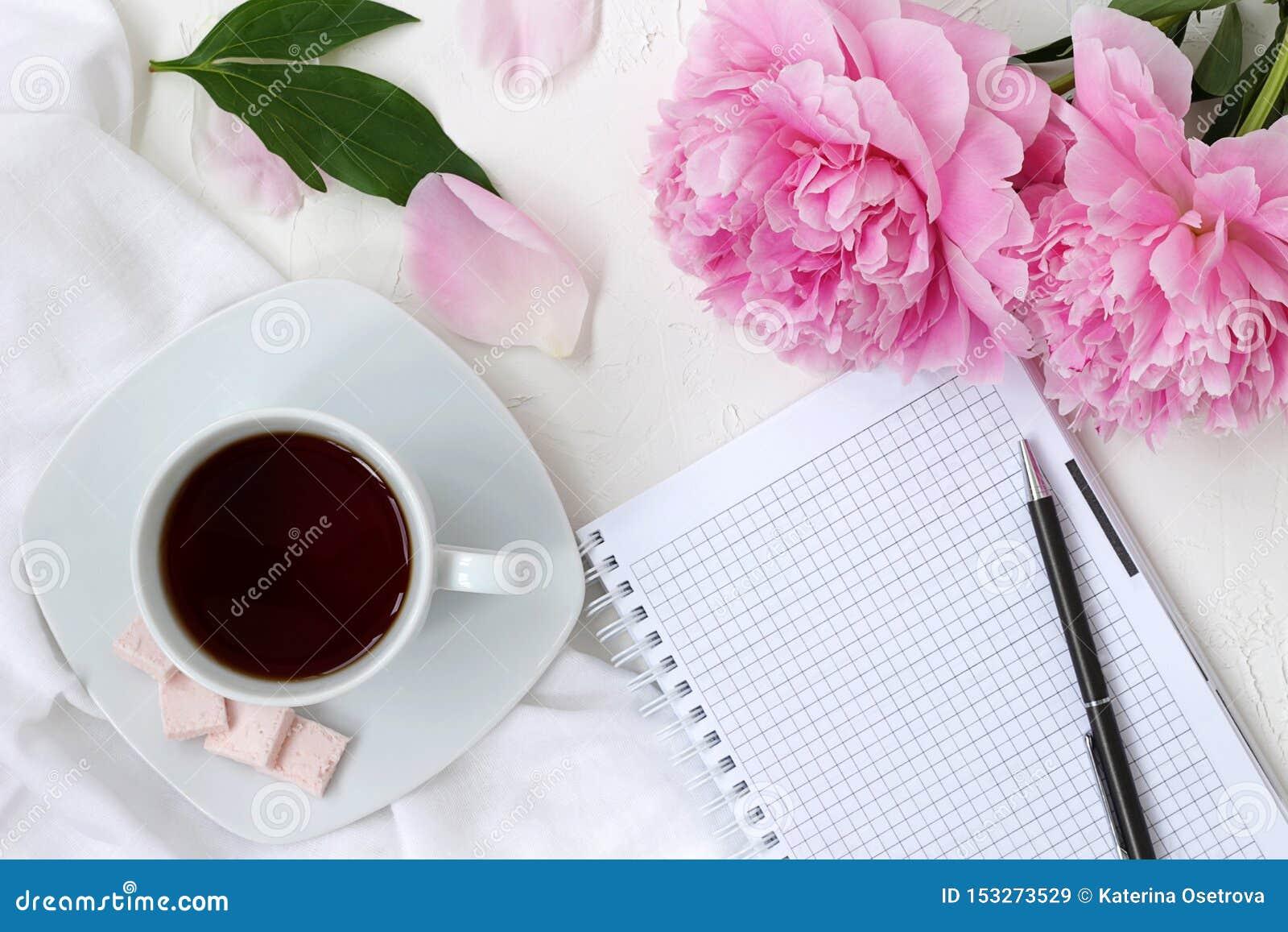 Coffe de la mañana en colores brillantes con las flores rosadas