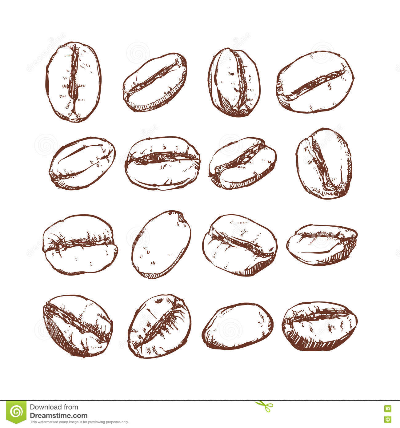 Coffee bean isolated hand drawn vector sketch of coffee for How to draw a coffee bean