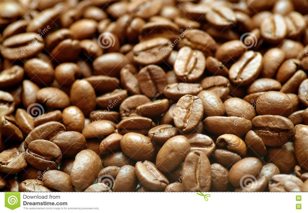 how to tell if coffee beans are fresh