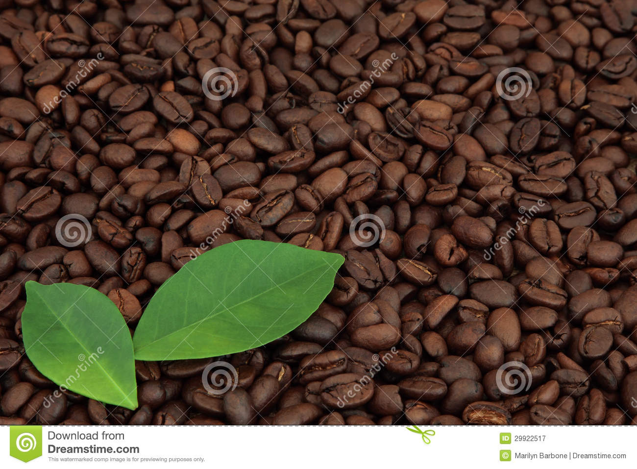 Coffee Beans Royalty Free Stock Photography - Image: 29922517 HD Wide Wallpaper for Widescreen