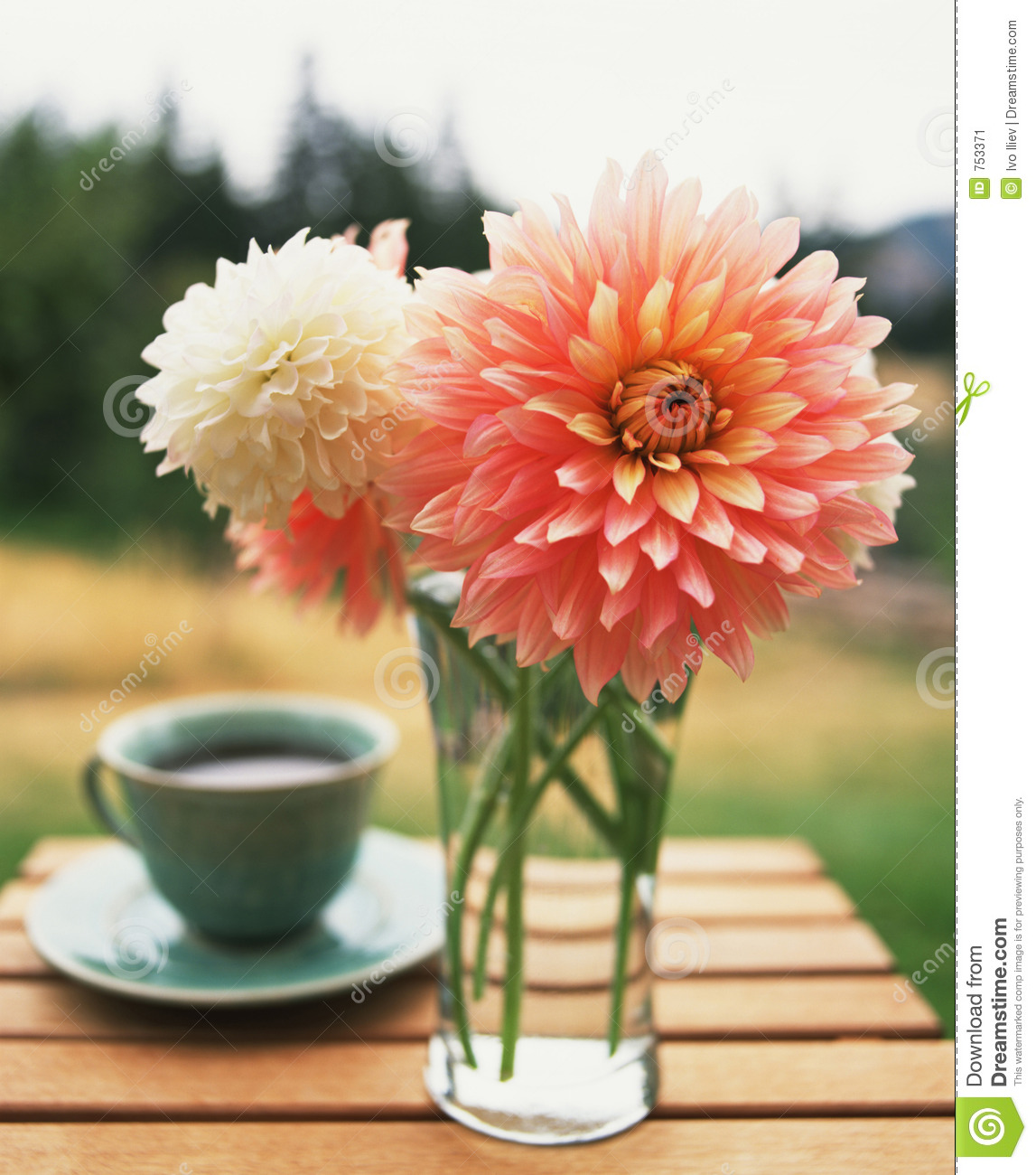 Coffee And Flowers Stock Image Image 753371