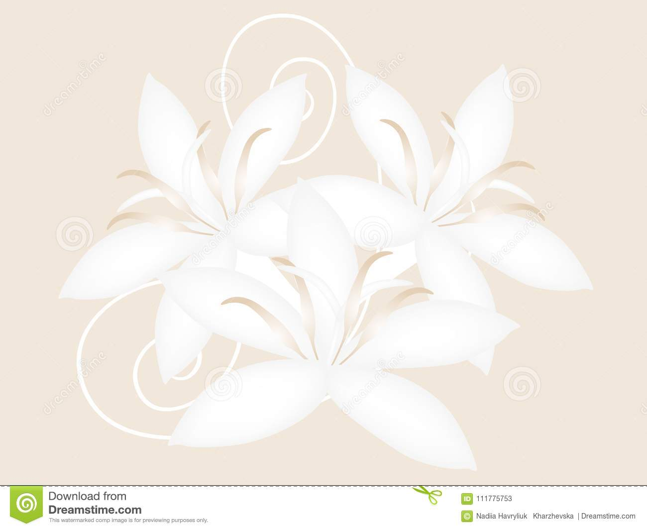 Coffee flowers isolated on a beige background, design.