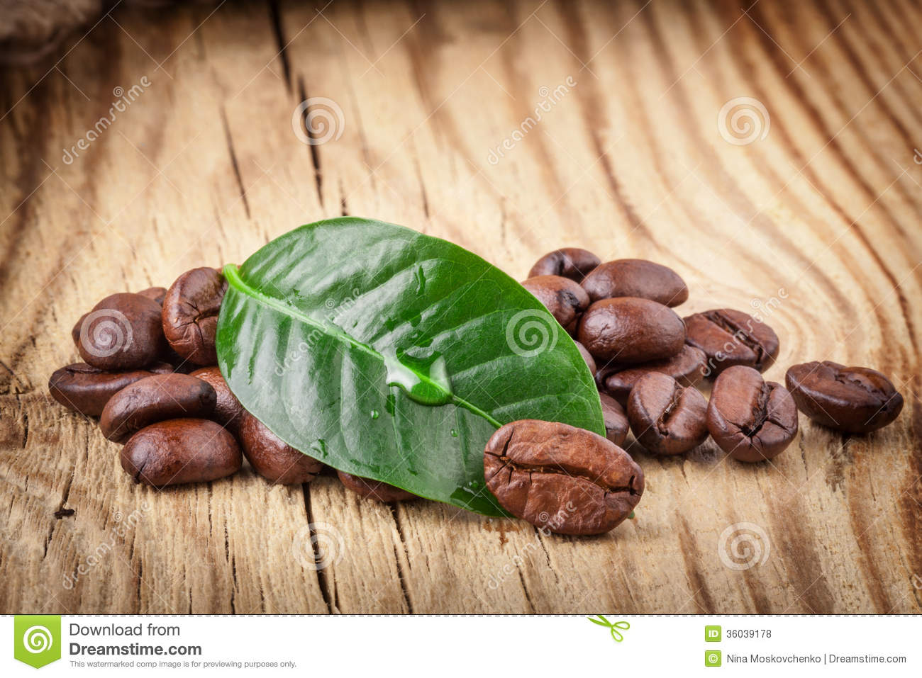 Coffee Grains And Green Leaf Royalty Free Stock Photos - Image HD Wide Wallpaper for Widescreen