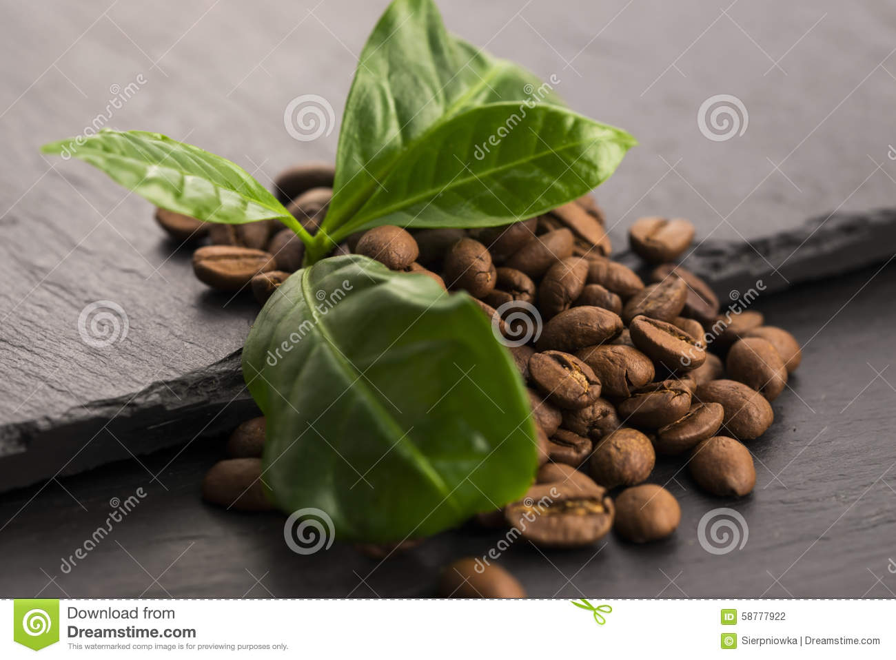 Coffee Grains And Leaves Stock Photo - Image: 58777922 HD Wide Wallpaper for Widescreen