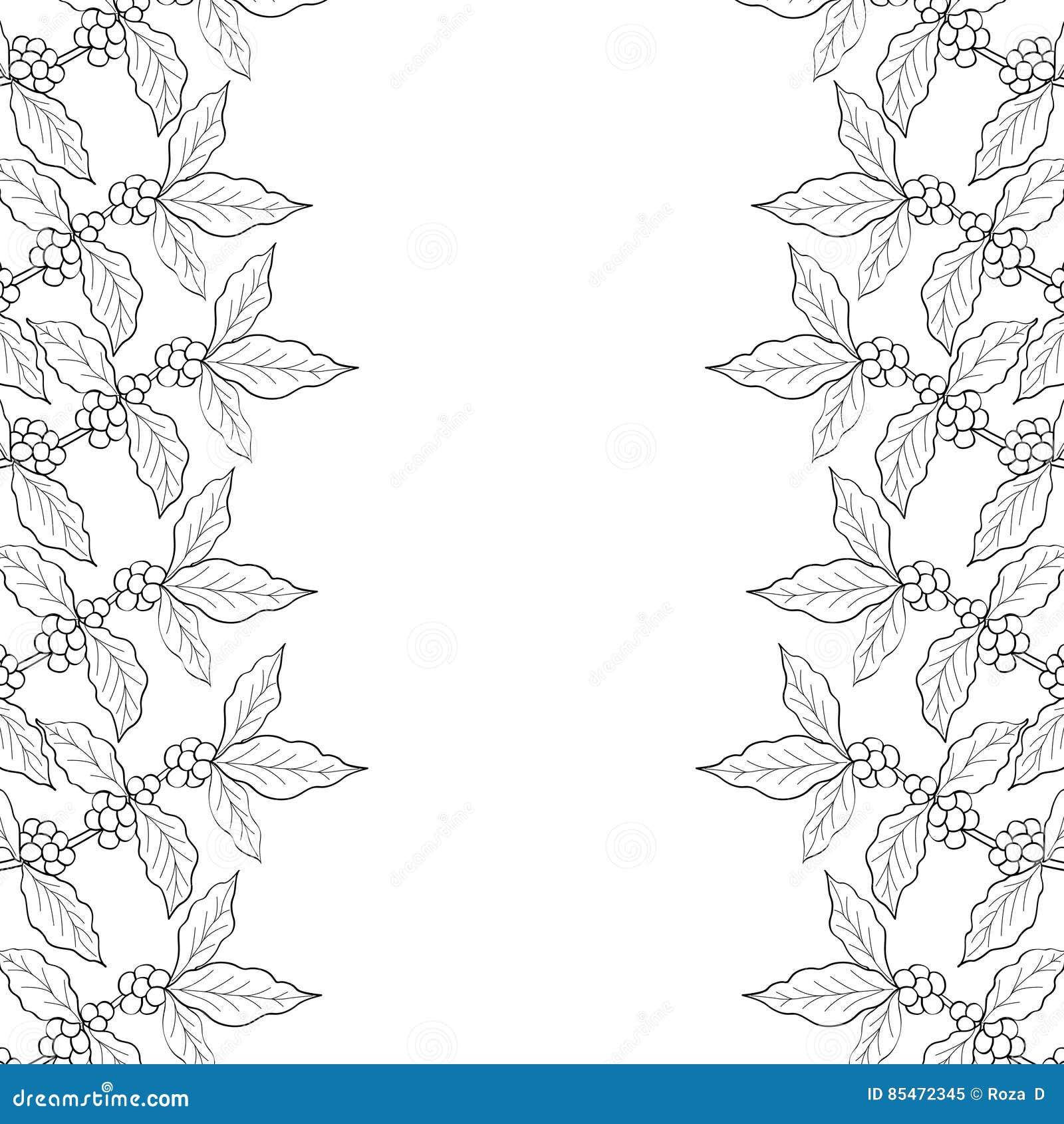 Coffee Leaf, Bean Vector Hand Drawn Border 3 Stock Vector ...