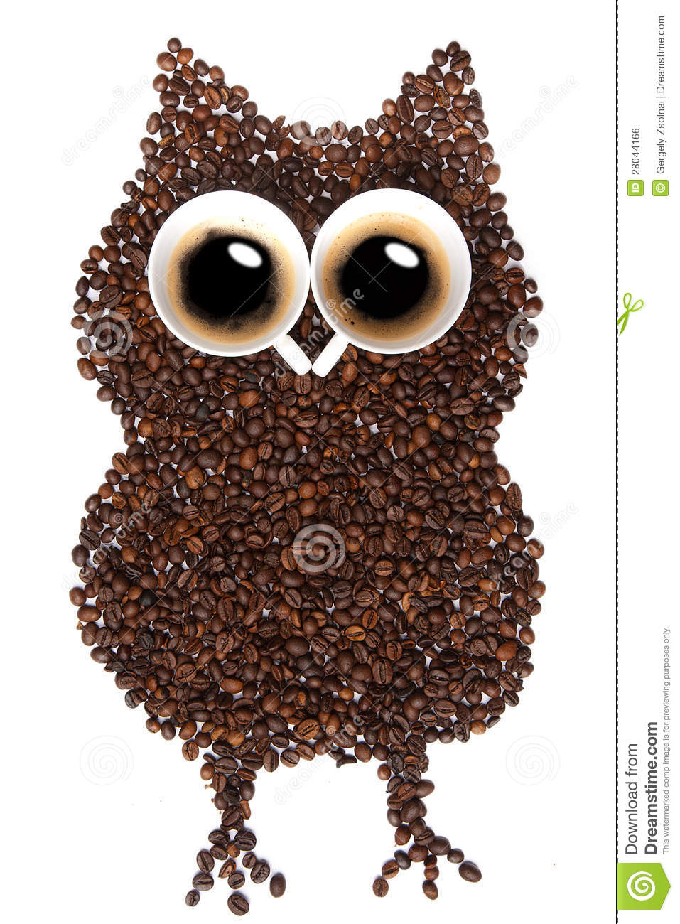 Coffee Owl Royalty Free Stock Image Image 28044166