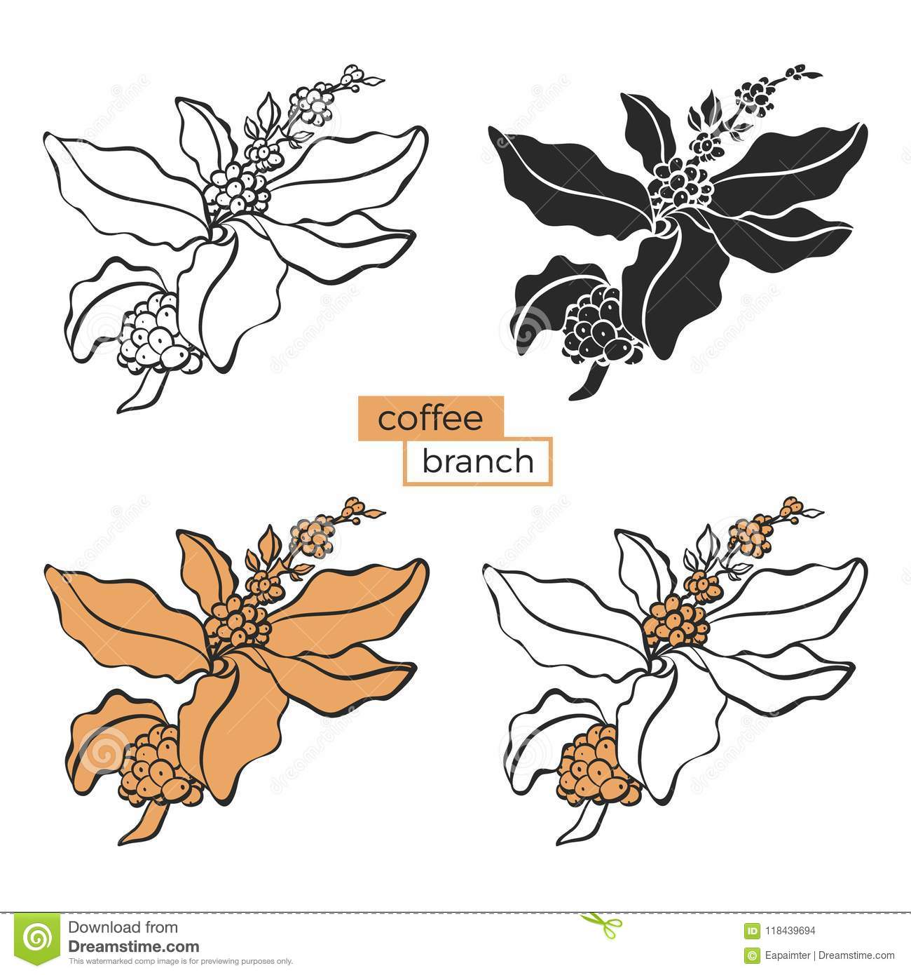 Coffee Set Of Branch With Leaf And Coffee Bean Stock Vector