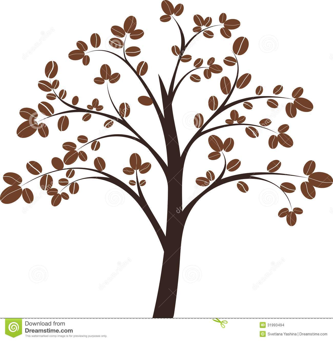 Coffee tree on white background, vector illustration.