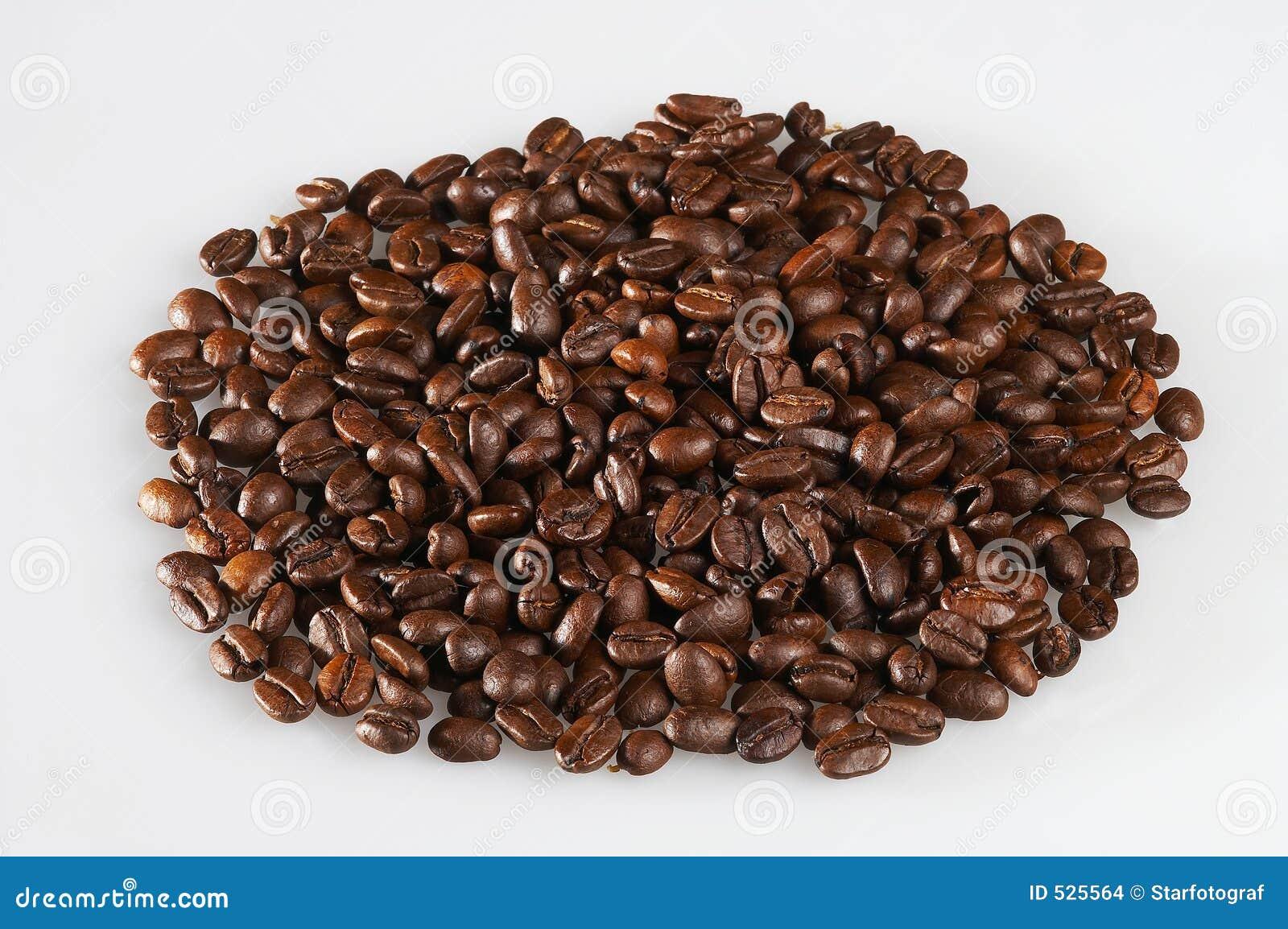 Download Coffeebeans kaffeebohnen 库存照片. 图片 包括有 公平, 贸易, 高地, java - 525564