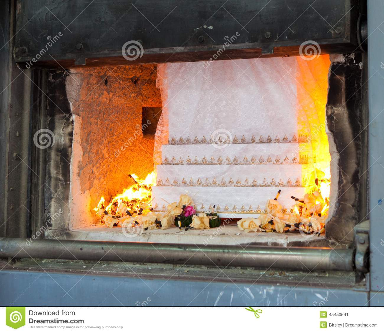 cremation business plan Free cremation cremation sample business plan for cremation - business plan # 31943327410.