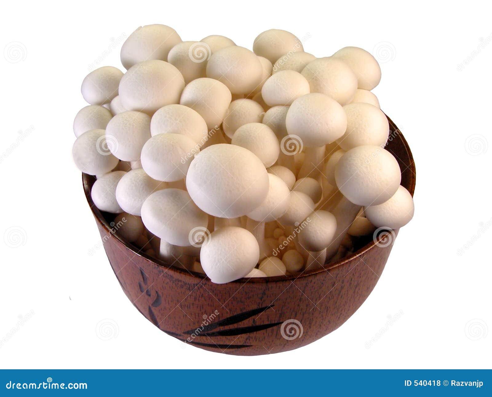 Cogumelos em uma bacia de madeira