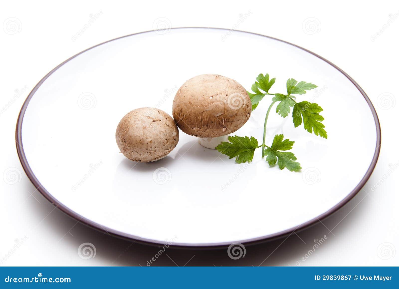 Cogumelos na placa