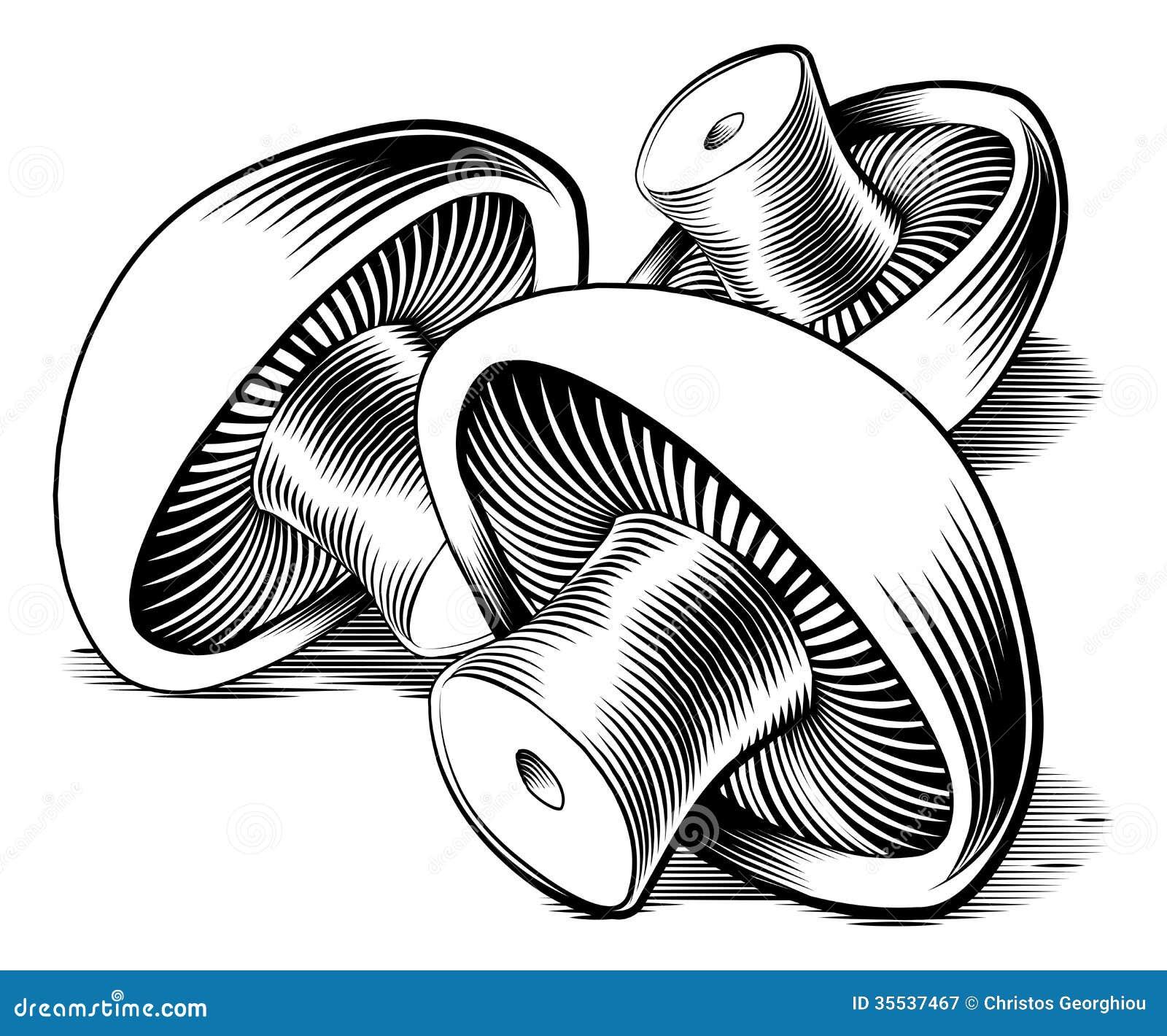 Cogumelos retros do bloco xilográfico do vintage