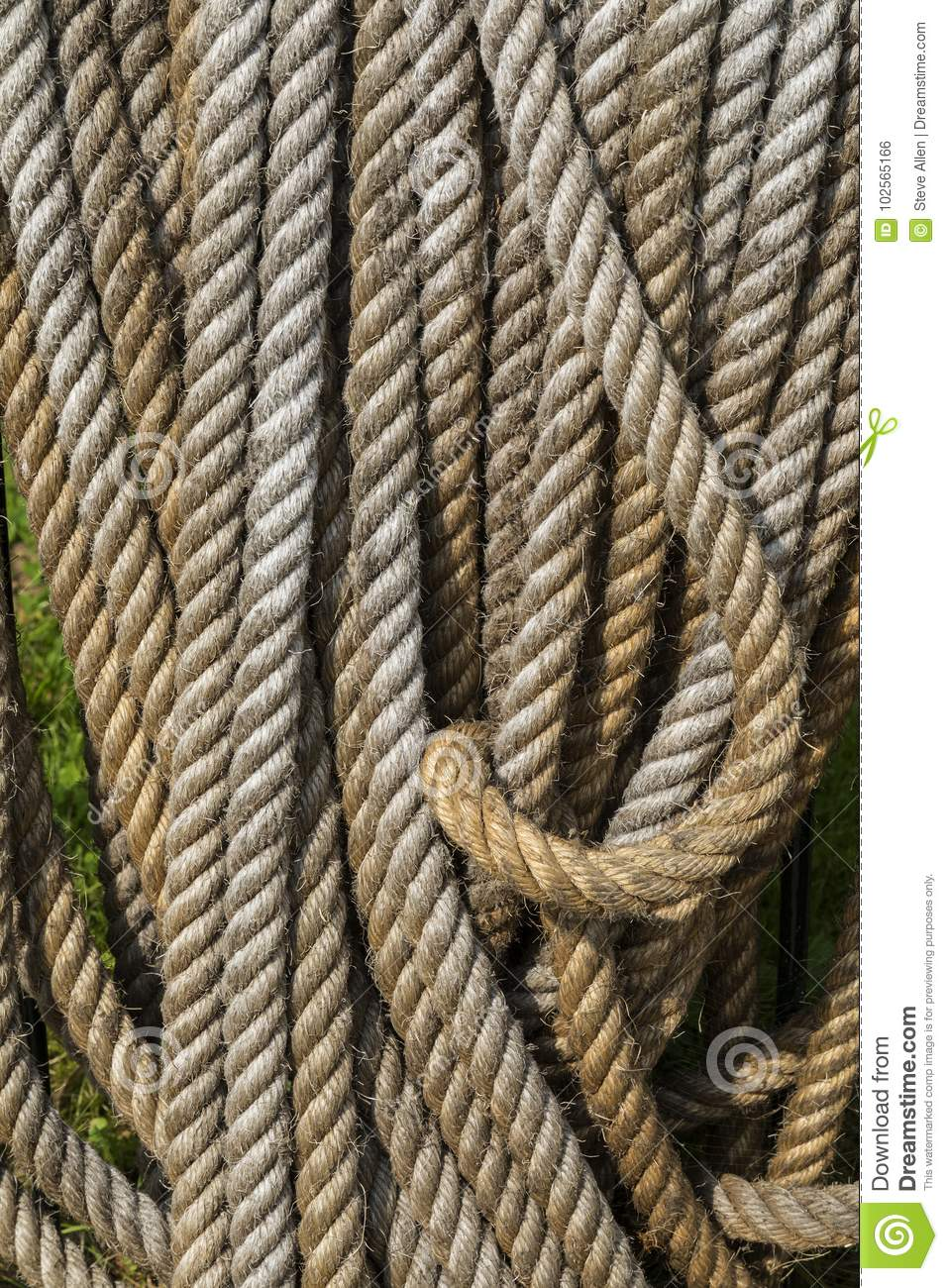 88510042c5f4 Coil of a traditional type of rope - made by twisting together strands of  hemp or sisal - in a harbor in Zuiderzee in the Netherlands.