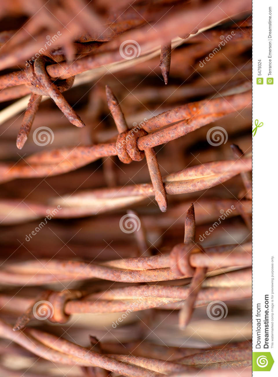 Coil of rusty barbed wire stock images image