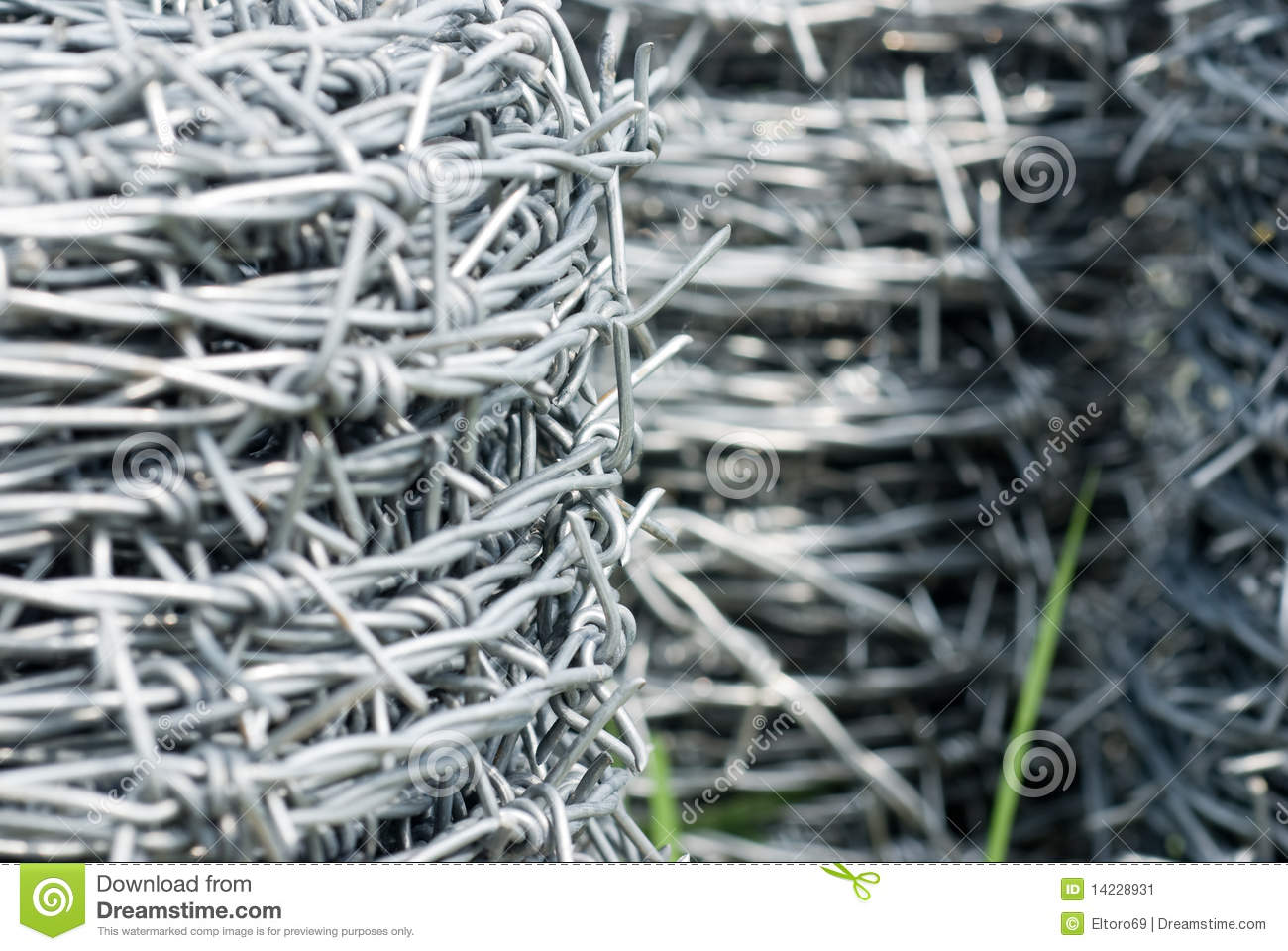 Coils of barbed wire stock image