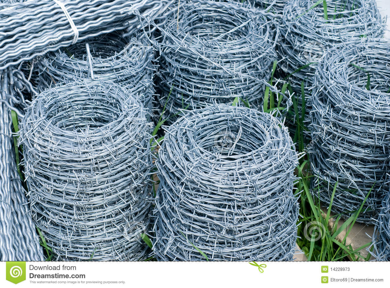 Coils of barbed wire stock photos image