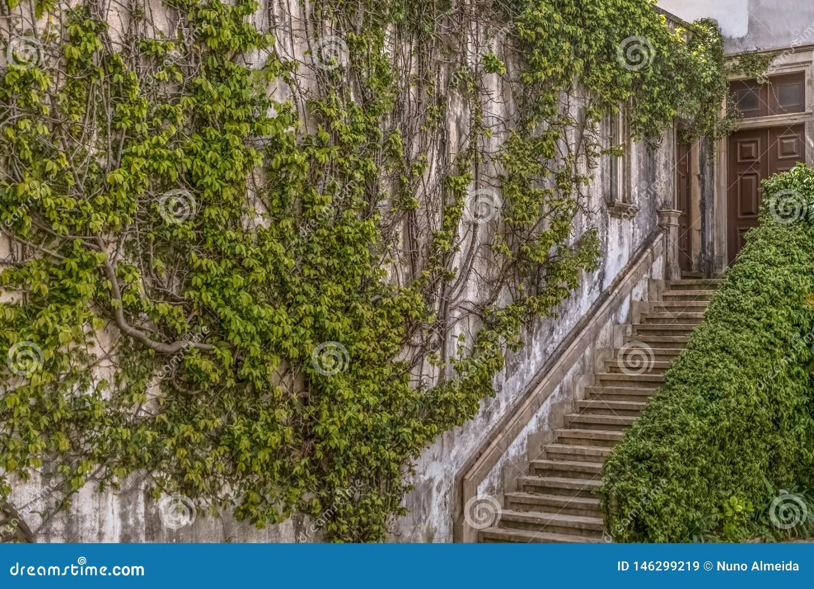 Coimbra, Portugalia/- 04 04 2019: Wewnętrzny widok uniwersytet Coimbra, prawo działu budynek, Melos pałac, wspina się