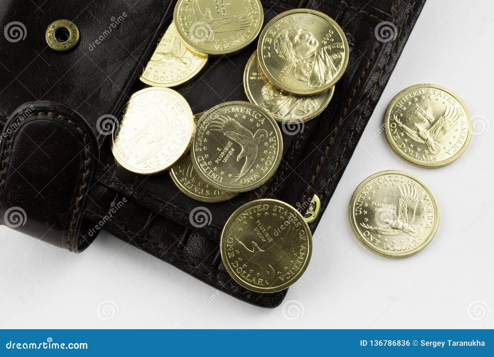 Coins plånboken