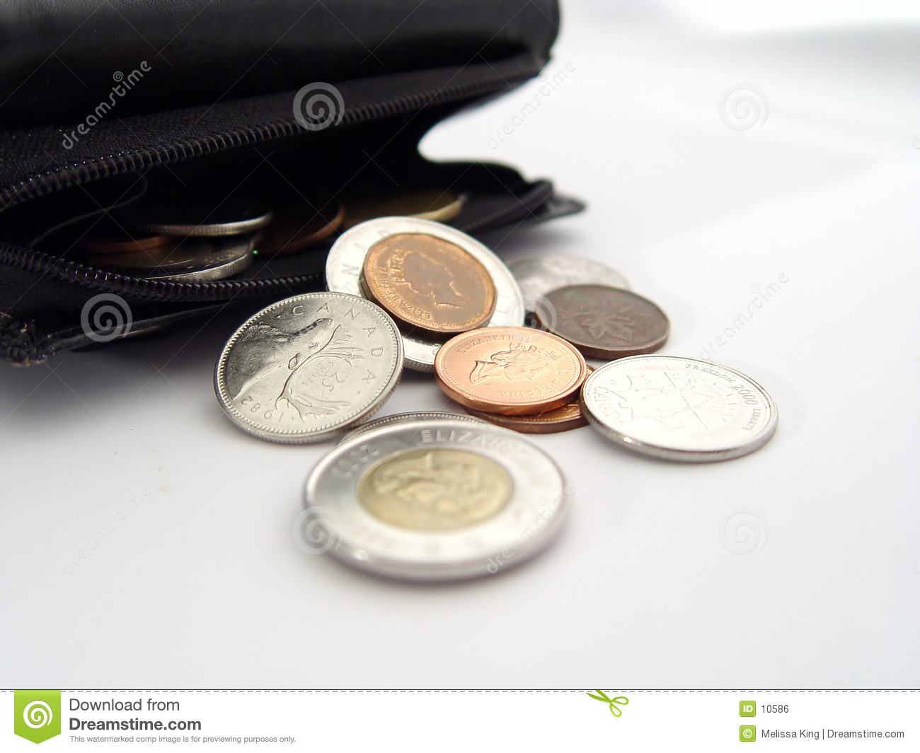Coins from Wallet